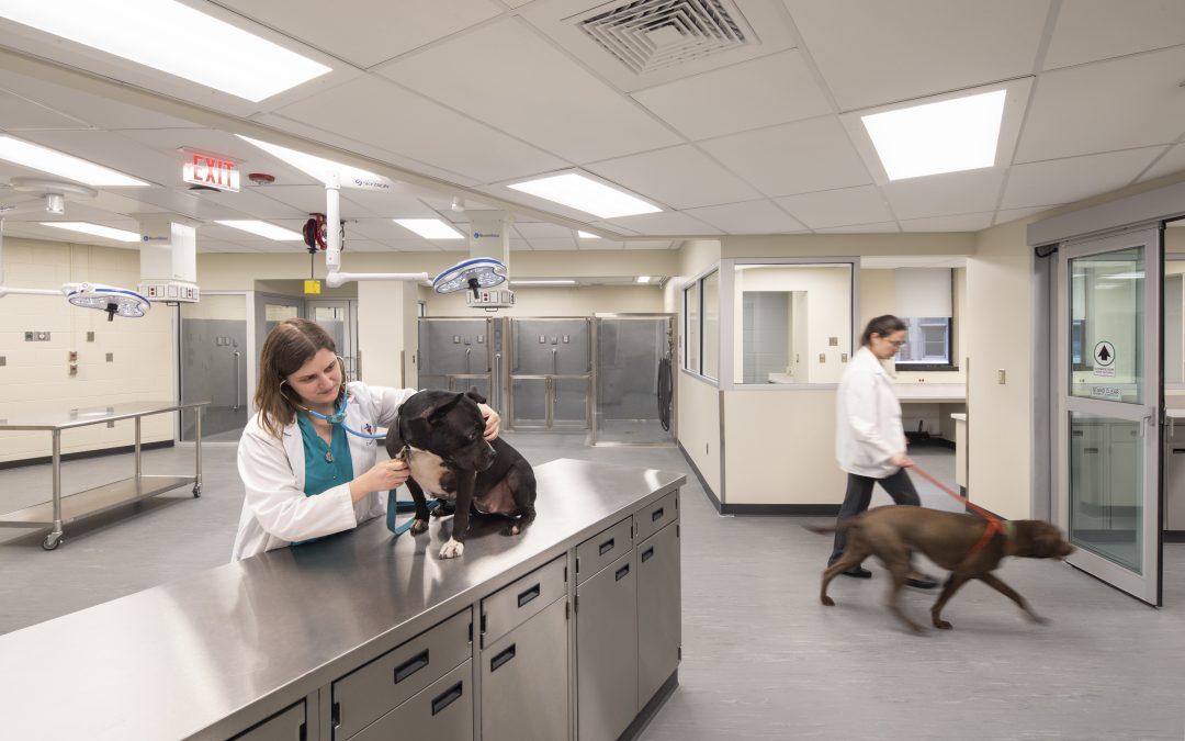 University of Pennsylvania – Ryan Veterinary Hospital Trauma Center